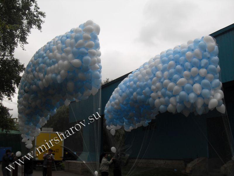 Запуск шаров - 15000 руб. (от 500 шт.)